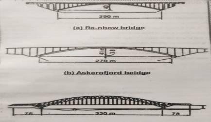 Typical steel arch bridges